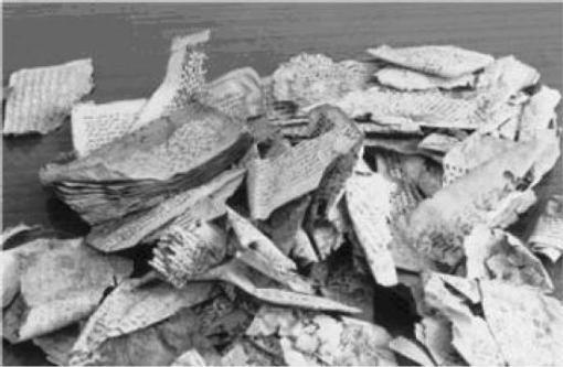 Sejumlah fragmen-fragmen perkamen Qur'anik dalam kondisi ketika mereka ditemukan